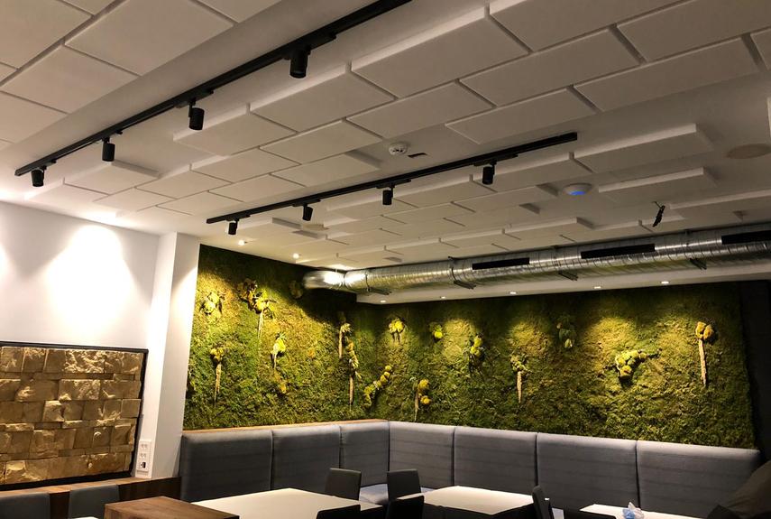 ¿Cómo eliminar el ruido en restaurantes?